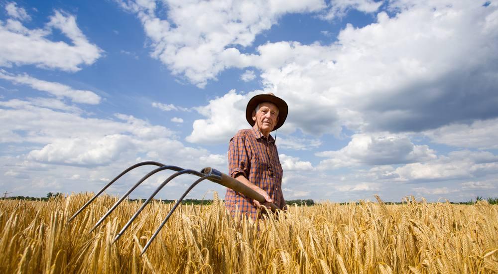 Las personas jubiladas pueden seguir cobrando su pensión y desarrollar actividad agraria